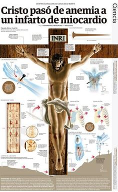 Christ rose from anemia to myocardial infarction Covenants In The Bible, Catholic Doctrine, Crucifixion Of Jesus, Bible Translations, Religious People, Jesus Resurrection, Catholic Kids, Jesus Pictures, Jesus Is Lord