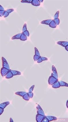 Images By Yazmin Basurto On Just Butterflies   Butterfly