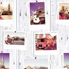 Selfie Dogs Landmark Wallpaper - Muriva 102558 | Feature