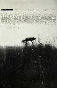 offrande by les brumes, via Flickr