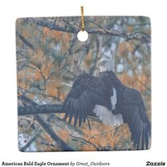 Shop American Bald Eagle magnet created by Great_Outdoors.