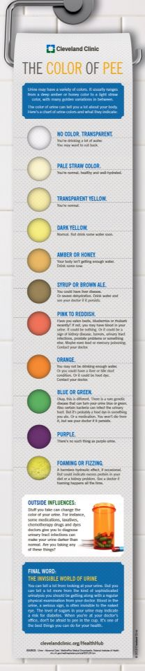 Urine Color Chart And What They Mean Bing Images Urine
