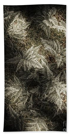 Ice Bath Towel featuring the photograph Frost Ferns by Jorgo Photography - Wall Art Gallery