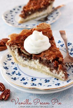 Vanilla Pecan Cheesecake Pie Recipe ~ It's the perfect holiday pie with vanilla infusing both layers and that nutty, crunchy topping balanced by the rich creaminess of the cheesecake Cupcakes, Cupcake Cakes, Pie Recipes, Sweet Recipes, Dessert Recipes, Just Desserts, Delicious Desserts, Yummy Food, Pecan Pie Cheesecake