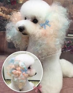"""Exceptional """"Poodle pups"""" detail is offered on our web pages. Dog Grooming Styles, Poodle Grooming, Pet Grooming, Cute Puppies, Cute Dogs, Dogs And Puppies, Poodle Cuts, Creative Grooming, Dog Haircuts"""