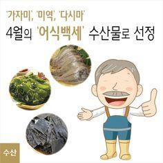 4월의 제철 웰빙 수산물로 고단백 저칼로리 식품 가자미와 최고의 웰빙식품인 미역ㆍ다시마가 선정되었습니다.  http://blog.naver.com/koreamof/120210575491