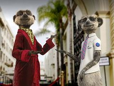 Compare the Meerkat's campaign has been so successful they have even created a 'meet the meerkats' section for their website. This even includes mini autobiographies.