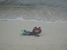 Barney Bear on the beach in Jamaica!