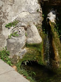 Villa D'Este, garden, Tivoli, Italy, 2012, Agata Byrne garden travels
