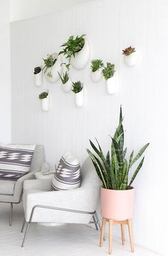 Now this is my kind of space. I love how many plants are on the wall, & that huge Snake Plant on the ground. Absolutely love it! I only wish there were more plants!