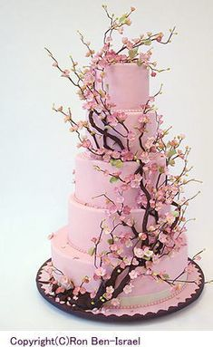 alexia dives posted Cherry Blossom cake by Ron Ben Israel - so pretty to their -wedding cakes- postboard via the Juxtapost bookmarklet. Gorgeous Cakes, Pretty Cakes, Cute Cakes, Amazing Cakes, Crazy Cakes, Fancy Cakes, Pink Cakes, Cherry Blossom Cake, Cherry Blossom Wedding