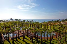 São Rafael Atlantic Hotel Babymoon in the Algarve, Portugal. Algarve, Hotels And Resorts, Best Hotels, Faro Portugal, Hotel Amenities, Wedding Abroad, Indoor Swimming Pools, Travel Wallpaper, Vacation