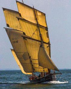 Sailing ... photo by Philippe Plisson; @dstraorza