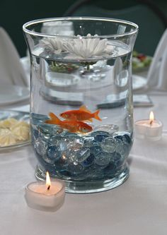 Goldfish as table center pieces at a wedding. Would be perfect for an aquarium wedding Wedding Table, Wedding Reception, Our Wedding, Dream Wedding, Wedding Ideas, Wedding Beach, Wedding Trends, Goldfish Centerpiece, Fishbowl Centerpiece