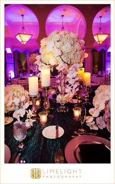RENAISSANCE VINOY St Pete Ceremony Wedding Guests Photography Limelight Stepintothelimelight
