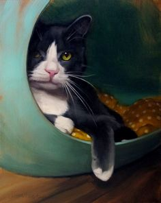 """Daily Paintworks - """"Petie in the Loop celebrity cat portrait"""" - Original Fine Art for Sale - © Diane Hoeptner I Love Cats, Crazy Cats, Cute Cats, Gatos Cats, Here Kitty Kitty, Cat Drawing, Animal Paintings, Dog Art, Pet Portraits"""