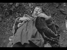 Arvo Part - Salve Regina (Full)Salve Regina by Arvo Pärt.  Performed by The Estonian Philharmonic Chamber Choir. Conducted by Paul Hillier.  Footage taken from Béla Tarr's Sátántangó (1994)