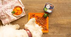Wet dog food on Lickimat You know we love to have fun with LickiMats making up fun recipes to spoil your dog. Dogs love trying out. Wet Dog Food, Puppy Food, A Food, Good Food, Different Fruits And Vegetables, Raw Food Recipes, Fun Recipes, Recipe Ideas, Healthy Balanced Diet