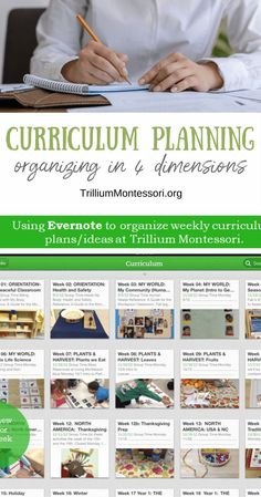 Organizing in Four Dimensions - Trillium Montessori