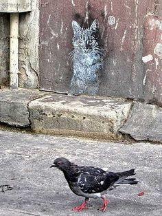 Chat By (Paris) Street art by Banksy By Miss-Tic Artist: El Mac Location: Los Angeles, CA art graffiti 3d Street Art, Urban Street Art, Murals Street Art, Amazing Street Art, Street Art Graffiti, Street Artists, Urban Art, Amazing Art, Banksy