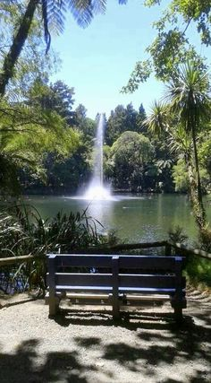 Pukekura Park, the most beautiful park I've been to yet, is beautiful daytimes and when lit up on summer evenings, in New Plymouth, NZ.
