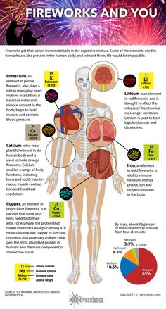 How Elements in Fireworks Make the Human Body Work (Infographic) Minerals For The Body, Firework Colors, R Colors, Body Map, Science Programs, Guy Fawkes, The 5th Of November, Porto, Human Body