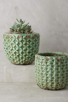 Shade Tree Garden Pot, $18, anthropologie.com
