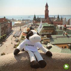 Urlaub... Die schönste Zeit im Jahr! Dank meiner Kollegen komme ich ziemlich viel rum. Dieses Mal ging es mit Marvin nach Helsingborg in Schweden.