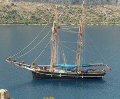 Rhea, Baltic Trader, topsail Schooner