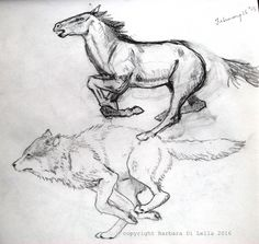 running horse and wolf drawings #runninghorsedrawing #wolfdrawing #handdrawn…