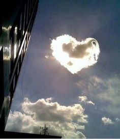 Valentine's Day special: Heart shapes in nature - Lifestyle News Heart In Nature, Heart Art, Beautiful World, Beautiful Places, Beautiful Pictures, Amazing Pics, Awesome, La Ilaha Illallah, I Love Heart