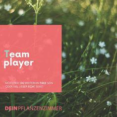Arbeite jeden Tag an deinem Pflanzenzimmer!🌱✨💗 . Du hast es in der Hand, ob du weiter wächst oder nicht! Übernehme die Eigenverantwortung in deinem Leben! Jetzt! 🙌🏻 . Hast du dir heute schon die richtigen Fragen gestellt, um dein Mindset auf die nächste Stufe zu bringen? 🌱 ✨ 💥 Wir dienen uns in jedem Moment gegenseitig wodurch wir persönlich und gemeinsam wachsen können.  Dadurch zeigt sich, dass in jedem von uns ein Teamplayer steckt! . Gibst oder nimmst du mehr? Bist du ein… Coaching, Instagram, Cover, Books, Movie Posters, Asking Questions, Plants, Life, Training