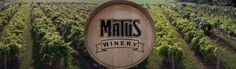 Matus Winery. #Ohio #Wine, Good entertainment & you can bring your own food in! Wakeman, OH