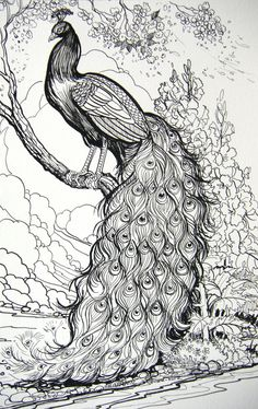 Fairy Tale Peacock by HouseofChabrier.deviantart.com on @deviantART