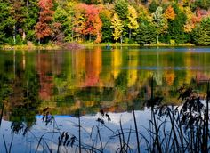 Hill's Creek State Park Pennsylvania Fall Foliage Reports Pennsylvania | Official Travel Guide