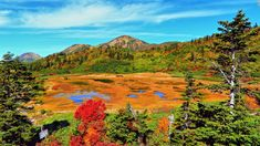 """Fall at Mt. Hiuchi brings out spectacular colors on Koya Pond.<br />The shallow and marshy water covered with vegetation changes colors -- into red, orange, yellow and green -- like the forest around it.<br />On the edge of the pond, Kouyaike Hutte provides beds and kitchen facilities if you need a rest on you hike up the 2,462-meter-tall mountain.<em><br /><a href=""""http://www.myoko.tv/kouyaike/index.html"""" target=""""_blank"""">Kouya Pond</em&gt..."""