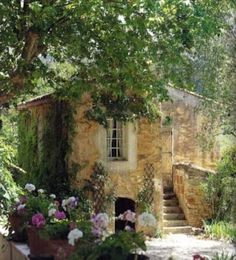 country litle houses - Pesquisa Google