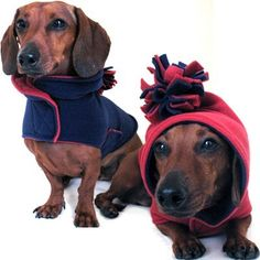 Eco Dog Coat - Recycled Red Navy Fleece - Large