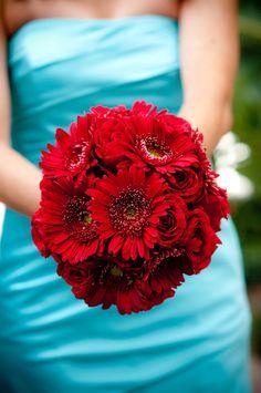 Gerbera daisies and roses  dani phaneuf photography
