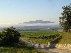 Tokaji tájkép