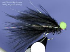Black Booby lake fly pattern - How to tie fly, Fly tying Step by Step Patterns & Tutorials