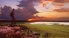 World Heritage-listed Kakadu National Park, Northern Territory, Australia. Kakadu National Park, National Parks, Best Places To Travel, Cool Places To Visit, Litchfield National Park, Travel Activities, Travel Tours, Places Around The World, Australia Travel