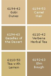 Sico Paint Palette - Tan And About Time