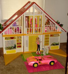 I had this Barbie Dreamhouse, the car & the dog prince.  Many hours were spent playing with those!