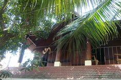 Homestays in Kochi Kerala India | adams homestay cochin