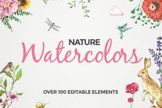 100+ Editable Watercolor Elements by Maroon Baboon on Creative Market