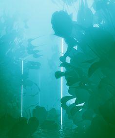 Digital Artist Creates Mesmerising Monochromatic GIFs - BlazePress