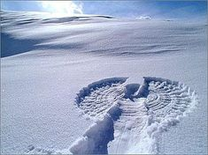 Snow angel....