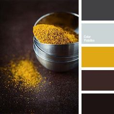 This palette embodies elegance and style. Bright mustard and light gray nicely dilute the gloominess of dark shades: black, dark brown and dark gray, giving the interior some zest and elegance. This palette is ideal for decoration of study or living room. House Color Schemes, Colour Schemes, House Colors, Color Combinations, Colour Pallete, Color Palettes, Brown Colour Palette, Winter Colour Palette, Color Balance