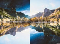 Photographer Flipped His Photo Upside Down And The Result Surprised Him